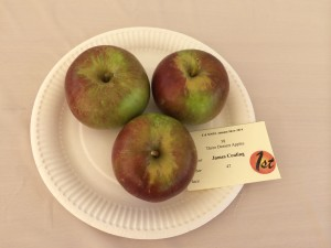 Prize Winning Apples